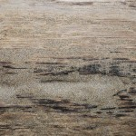 Sand and Wood Texture